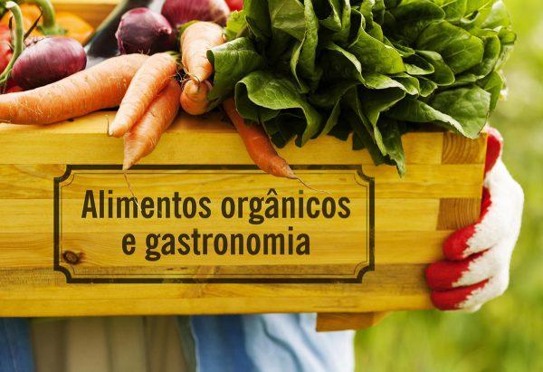 AGROECOLOGIA AMÉRICA DO SUL JÁ 03