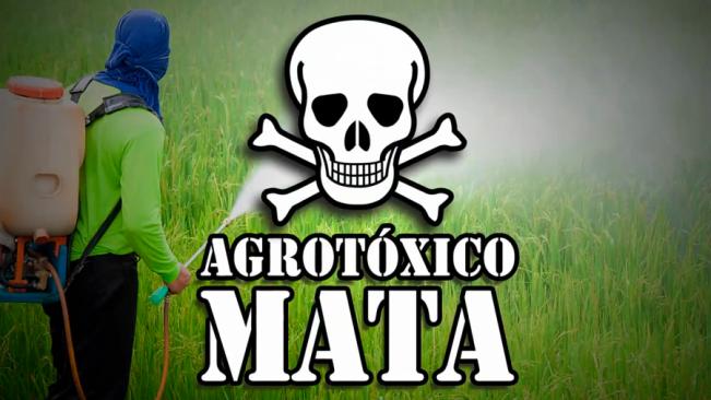 AGROTÓXICOS MATA 10