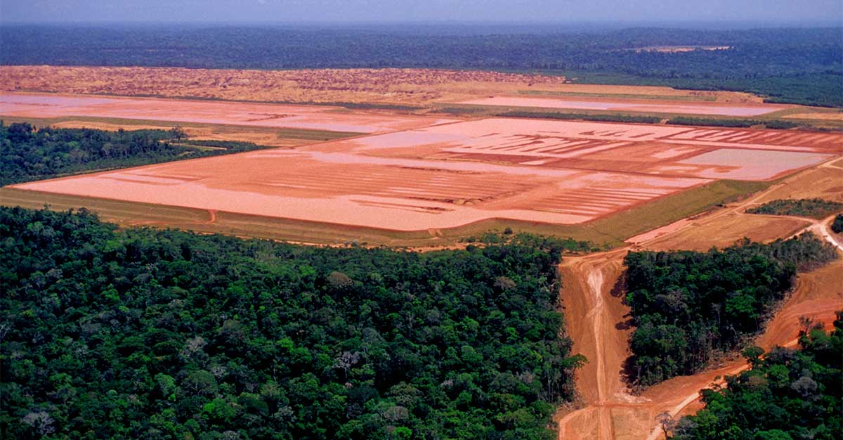 Extraction of bauxite in the middle of the Amazon.