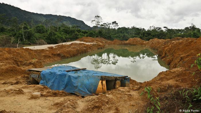 Amazônia 03